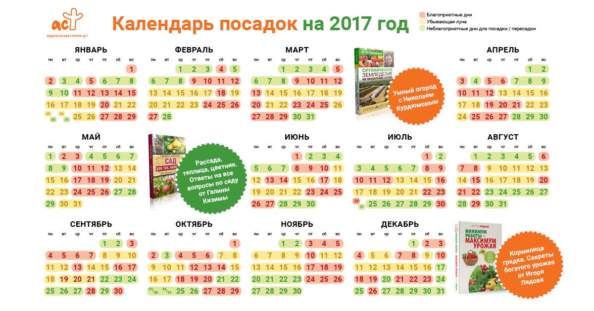 Календарь посадки для огорода